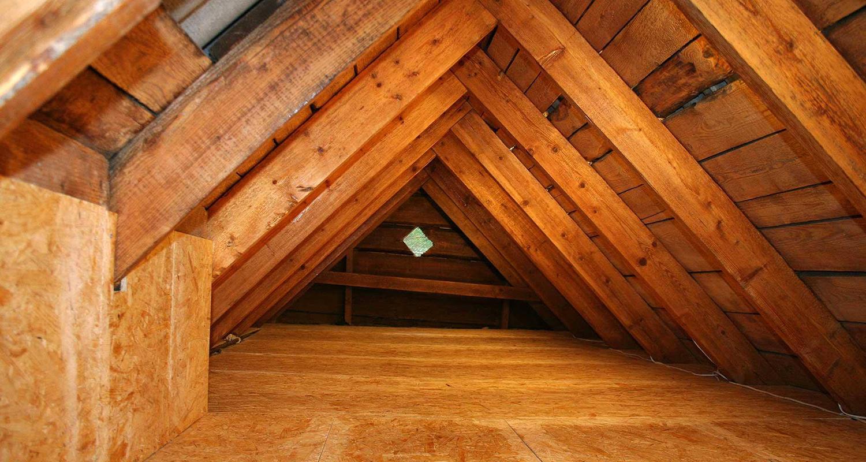 Attic Cleaning Service | Evergreen Attic Insulation | (888) 396-7071